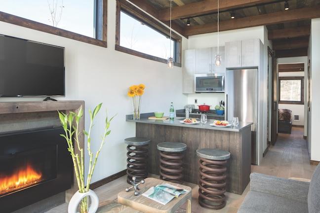 Wheelhaus Wedge tiny modular home kitchen