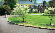Use of Porous Pave permeable paving used in a residential setting