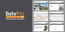 BehrPro, website, internet, marketing