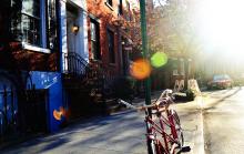 Homes in thriving neighborhood.